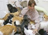 عمانية تعيش مع 500 من قطط وكلاب الشوارع